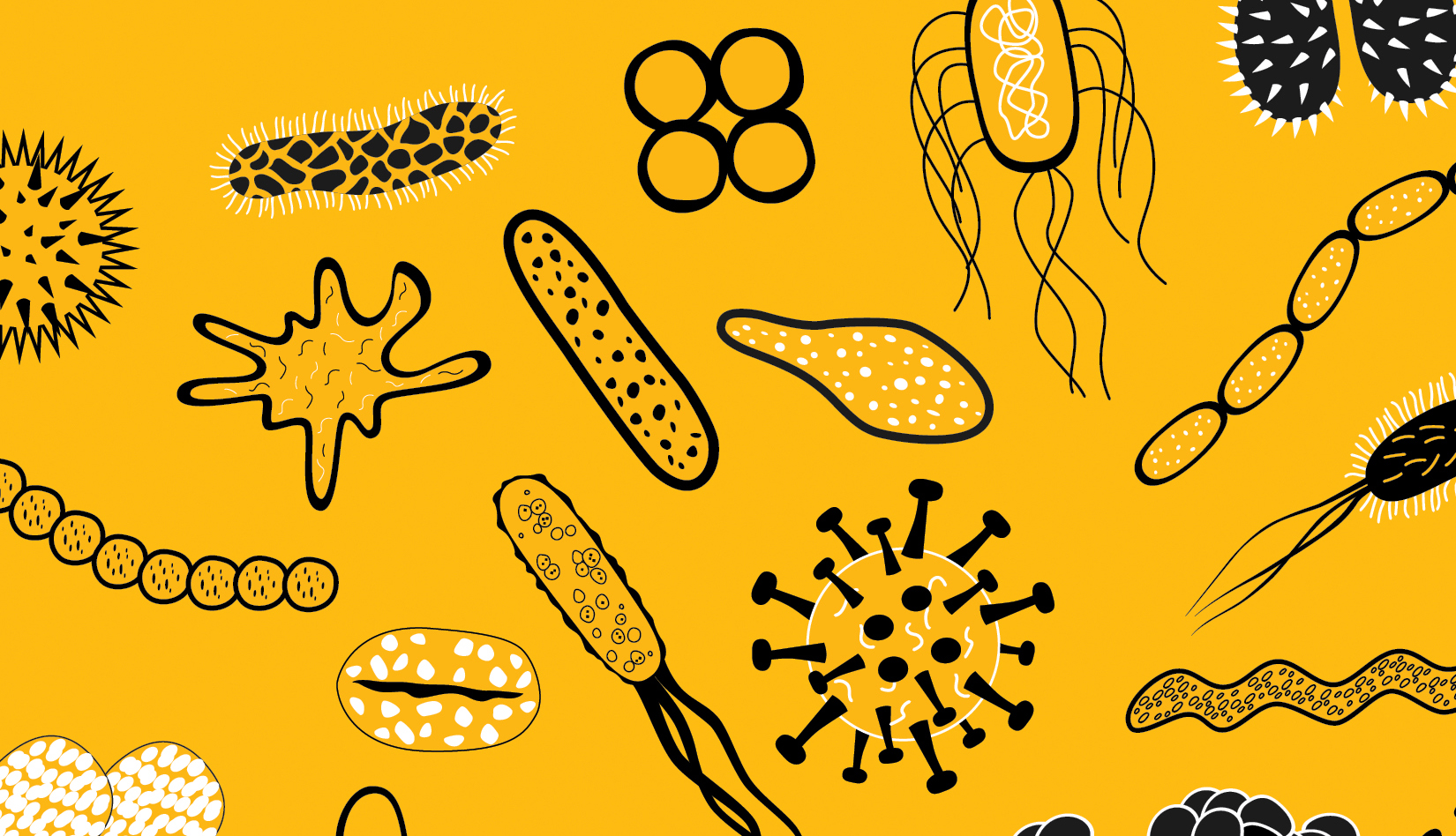 Illustrated cell with yellow background